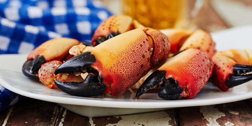 best things to eat in orlando stone crab claws
