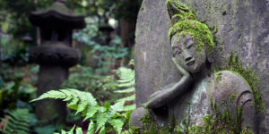 Tokyo's Urban Oases: Where to Find Your Zen in the Metropolis