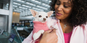The Most Dog Friendly Airports in the U.S.