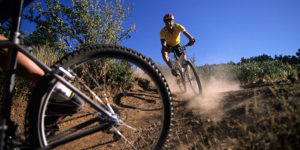 Ride on the Wild Side: Daring Denver Bike and ATV Trails
